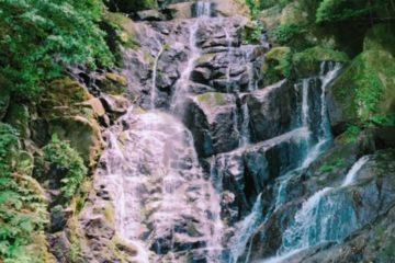 白糸の滝とウナギ