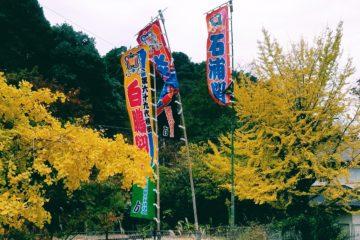 九州場所は冬の訪れ